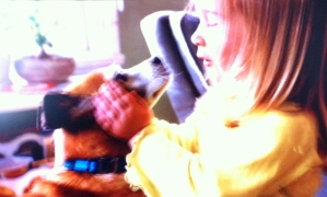 Iams's Keep Love Strong dog food campaign is charming, with its scenes of dogs and their owners, including the latest one, of this little girl being pulled around on a blanket by her dog. From a hygiene and dog-training perspective though, somebody should probably tell her that she shouldn't kiss her pooch on the mouth - his tongue has probably been licking his butt.