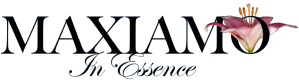 "Maxiamo, final logo, with lily and tagline ""In Essence"""