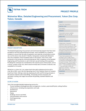 Page 1 of standard project profile - in this instance, Engineering Design and Procurement for Wolverine Mine.